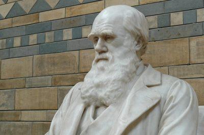 Czy Darwin zwiódł religioznawców?