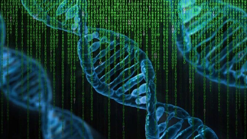 """To nie przypadek. Od bakteryjnych układów napędowych do ludzkiego DNA – świadectwa inteligentnego projektu są wszędzie<span class=""""wtr-time-wrap after-title"""">Czas czytania: <span class=""""wtr-time-number"""">13</span> min </span>"""