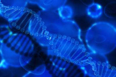 """""""Nature Reviews Genetics"""" – funkcjonalność pseudogenów """"przedwcześnie odrzucona"""""""