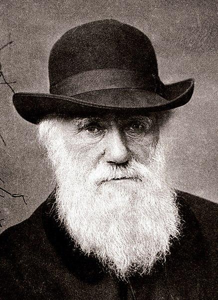 """""""Darwin się mylił. Teoria doboru naturalnego nie może stanowić wyjaśnienia dla makroewolucji"""", Problemy Genezy 2012, t. XX, s. 56-65."""