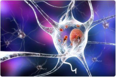 Najnowsze badania molekularnych podstaw choroby Parkinsona