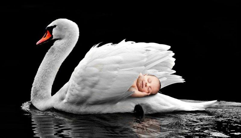"""Molekularne podstawy przedwczesnego porodu spowodowanego stresem matki<span class=""""wtr-time-wrap after-title"""">Czas czytania: <span class=""""wtr-time-number"""">4</span> min </span>"""