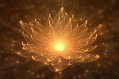 Wedanta o życiu i świadomości w ujęciu Bhakti Niskamy Shanty